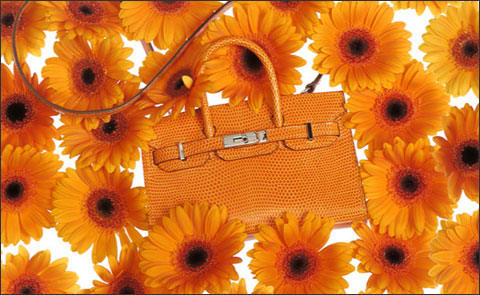 Сумки Birkin Tiny и Kelly Tiny от Hermes