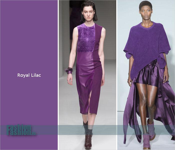 Фиолетовый оттенок Royal Lilac